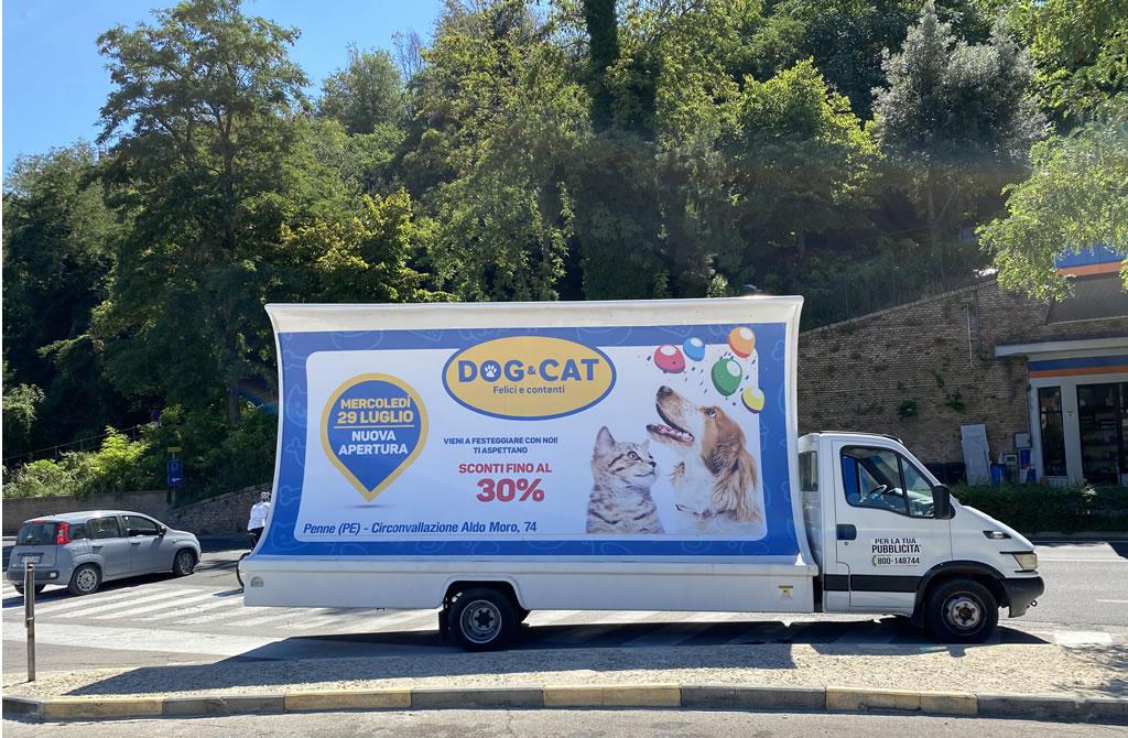 servizi vela dog cat